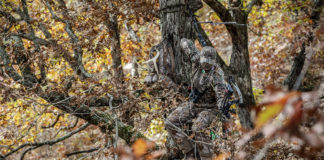 fully loaded bow hunting