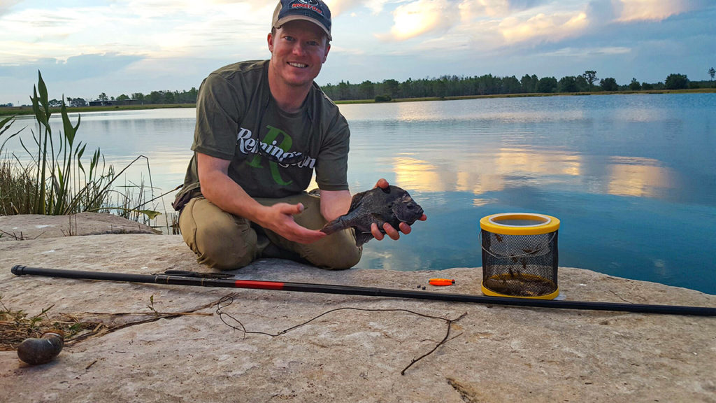 Bluegill fishing - The Trill of the Gill pic 3