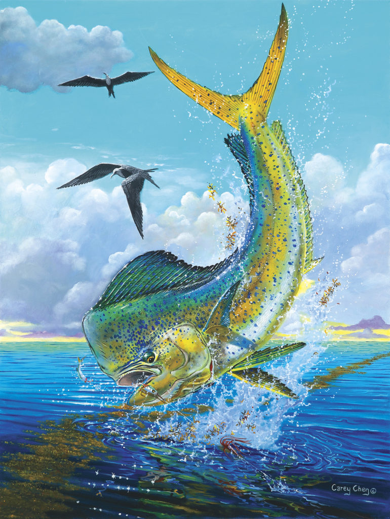 marine art fish painting carey chen pic 2